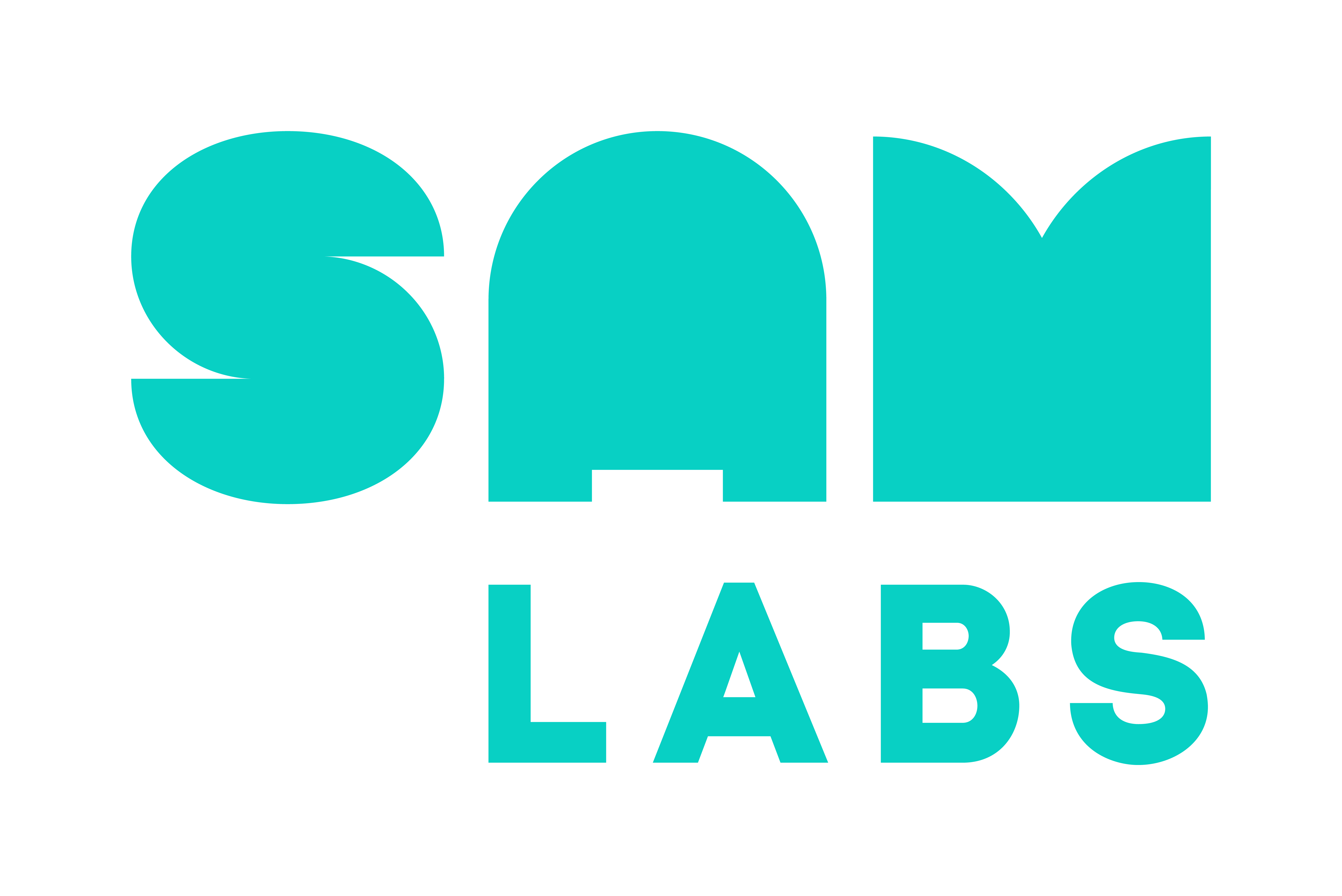 SAMLabs Logo Small Usage Colour RGB